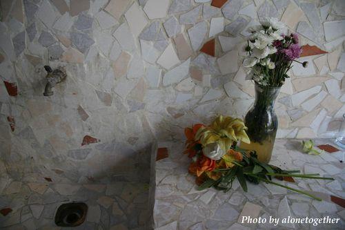 Flower, Hotel Trinidad